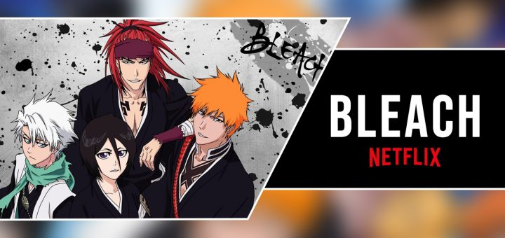 Bleach Season 6 All Seasons on Netflix Plot